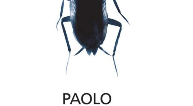 """""""Hanno tutti ragione"""" – Paolo Sorrentino"""